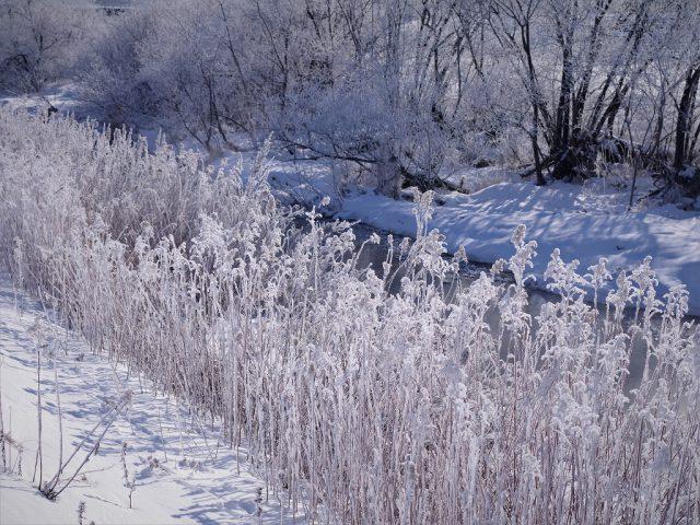 北海道の仕事と暮らし82 「働く環境づくりの手引き」