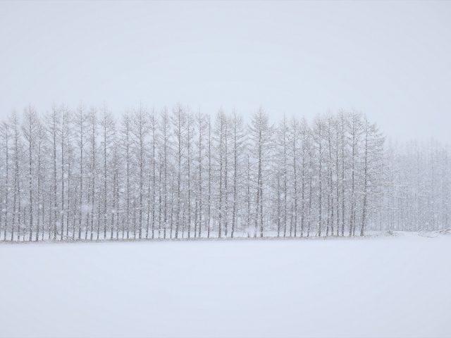 北海道の仕事と暮らし85 「働く環境づくりの手引き」