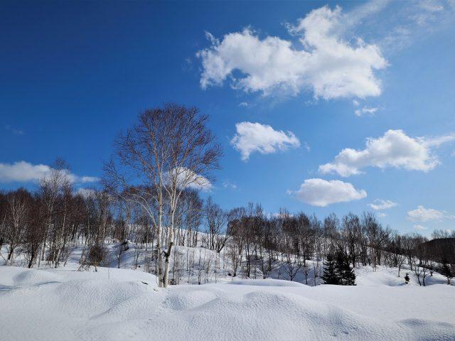 北海道の仕事と暮らし90 半住民型旅行